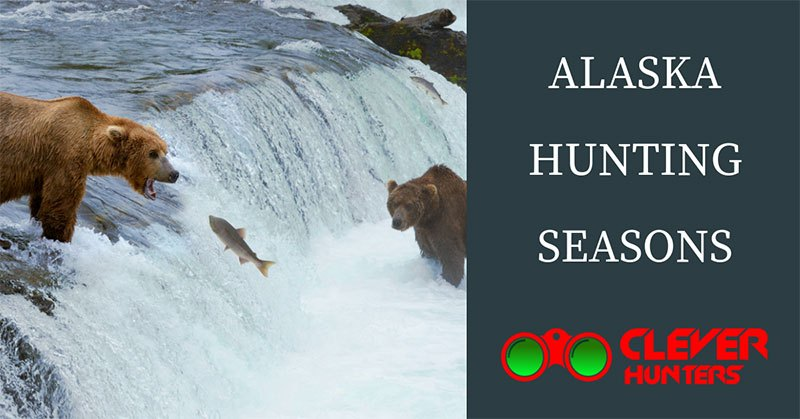 Alaska Hunting Seasons