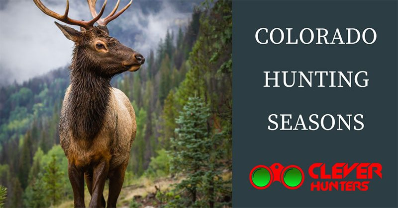 colorado hunting seasons