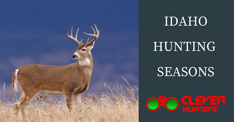 Idaho Hunting Seasons