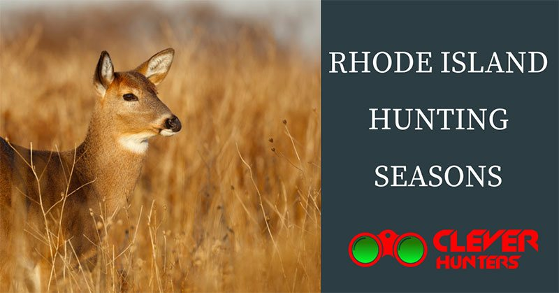 Rhode Island hunting seasons