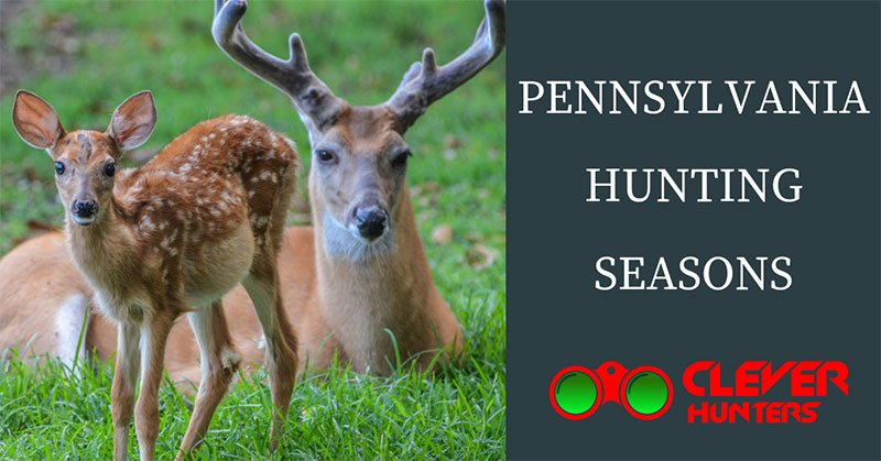 Pennsylvania Hunting Seasons