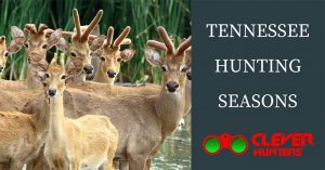 Tennessee Hunting Seasons, 2018 – 2019