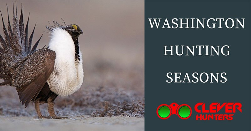 Washington Hunting Seasons